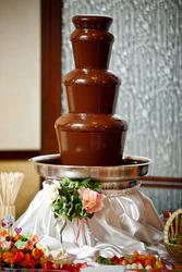 Шоколадный фонтан Луцк аренда,  фруктовые пальмы,  фруктовые композиции